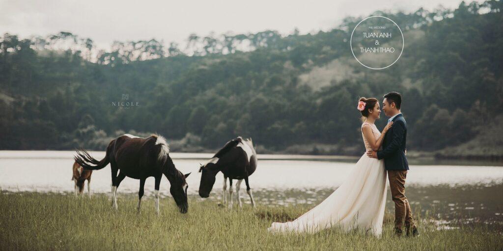 chụp ảnh cưới trọn gói ở đà lạt