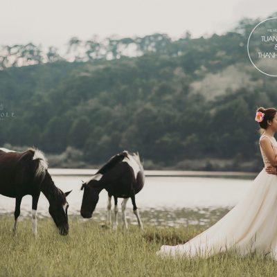 Những cửa tiệm cho thuê áo cưới đẹp ở đường Hồ Văn Huê