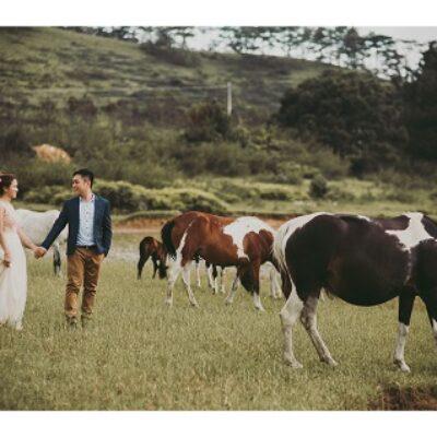 Chụp ảnh cưới giá rẻ: Các gói 2 – 3 triệu đồng có gì?