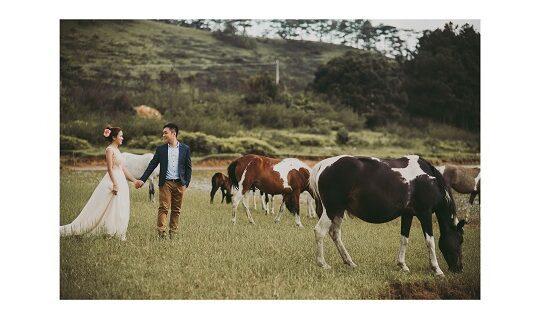 chụp hình cưới giá rẻ tp hcm